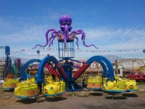 Amusement Park Octopus Rides