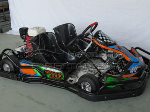 2 Seater Go Kart For Sale