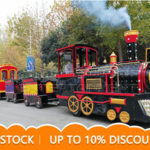 Carnival Trackless Train For Our American Client