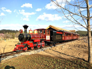 Attractive Scenic Track Train For Sale