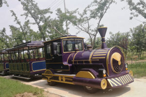 Large Tourist Trackless Train